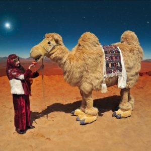 Kamel Walkact Winter